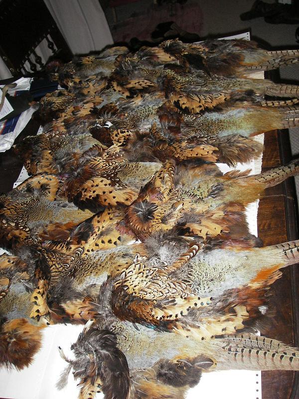 pheasant-skins-001